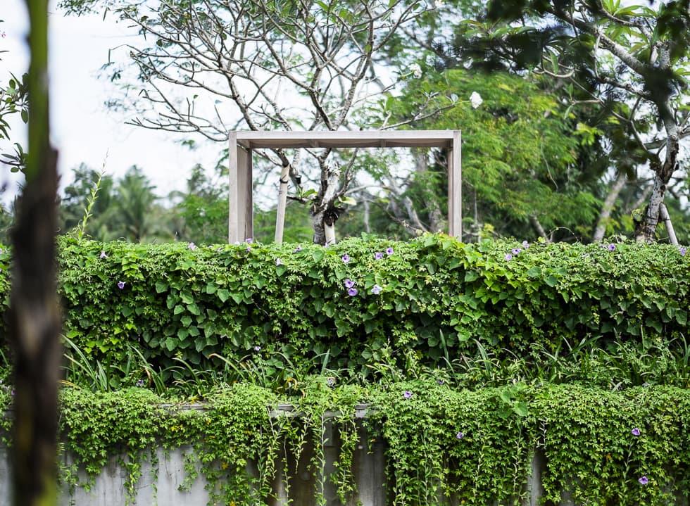 Manual Travel Series: Ubud (Part 1)