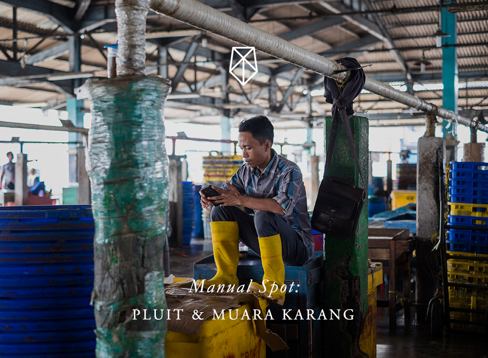 Manual Spot: Pluit & Muara Karang