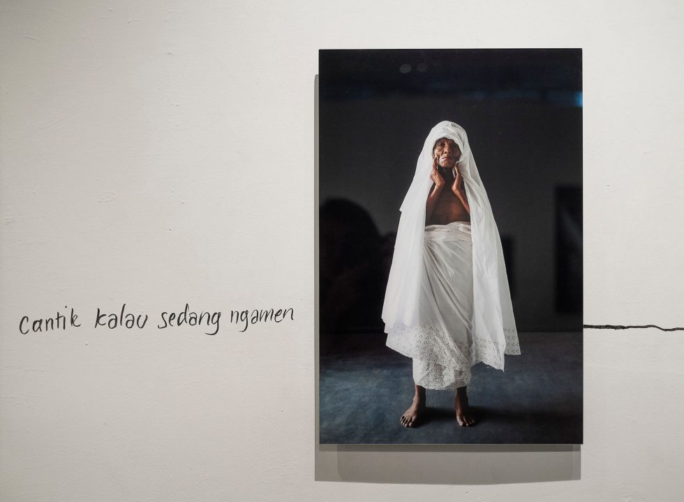 Free Fall Exhibition by Vanessa Van Houten