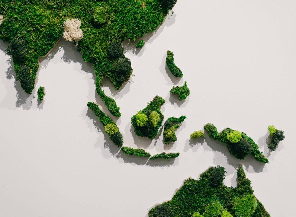 BOTANI's Imaginative Moss Garden