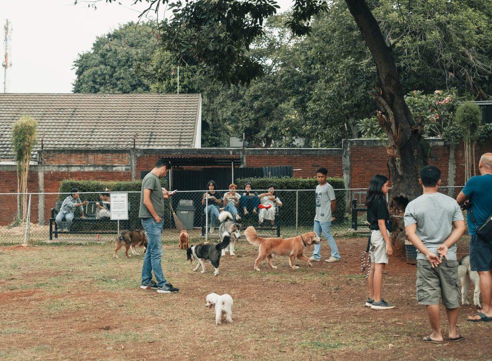 Manual Excursion: COMO Park