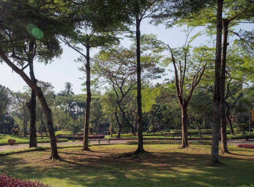 Manual Excursion: Taman Tabebuya