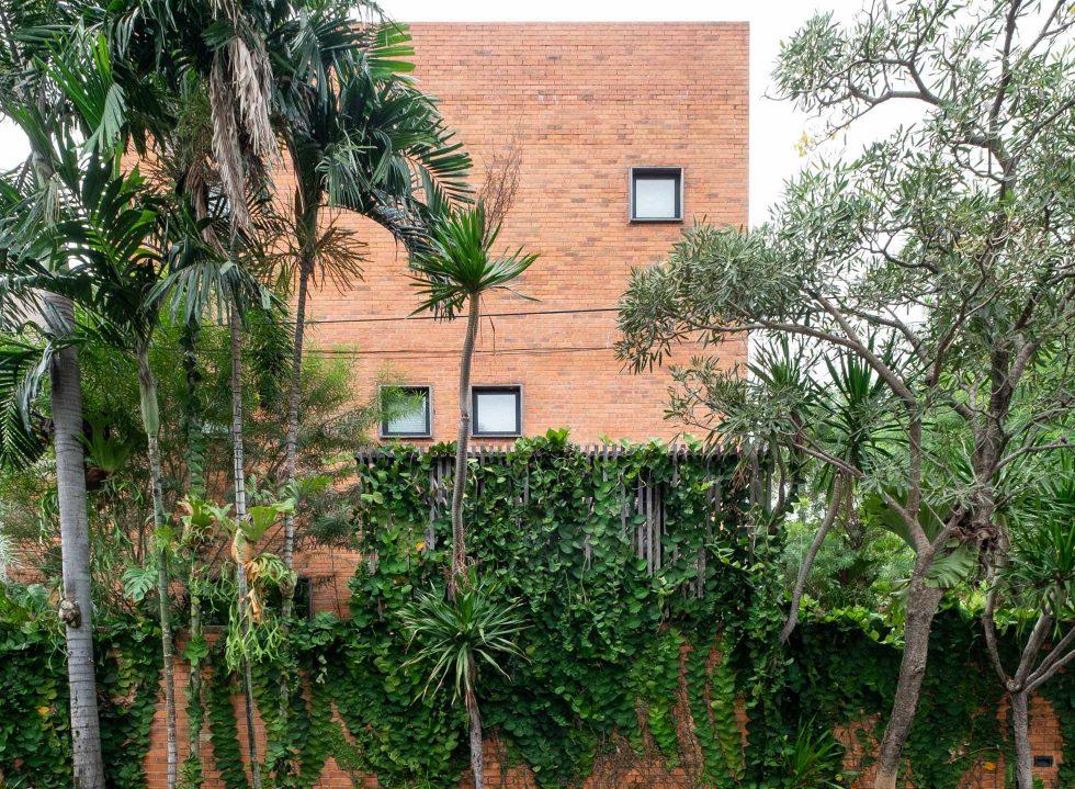 The Spectacular Resurgence of Houseplants