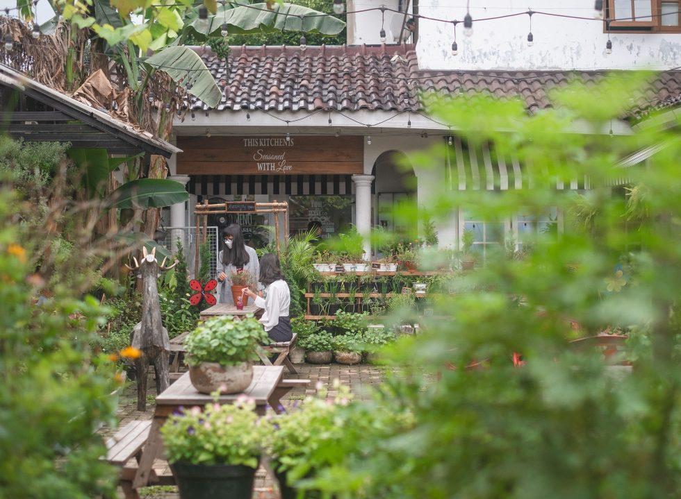 Mandira's Garden