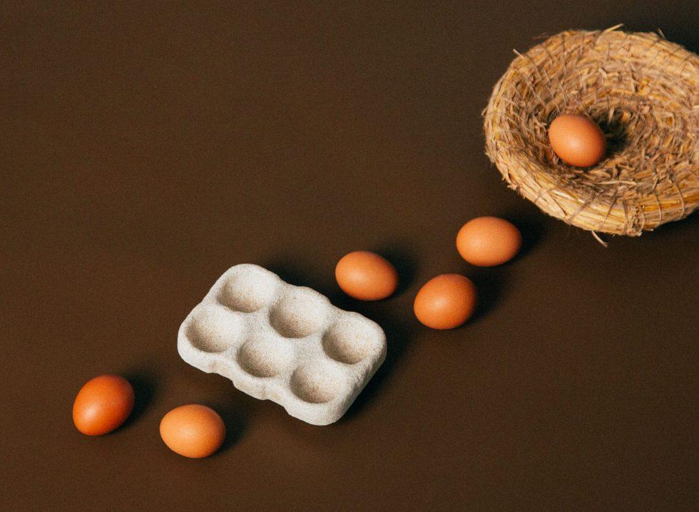 Manual Pick: Hom Lab Egg Tray